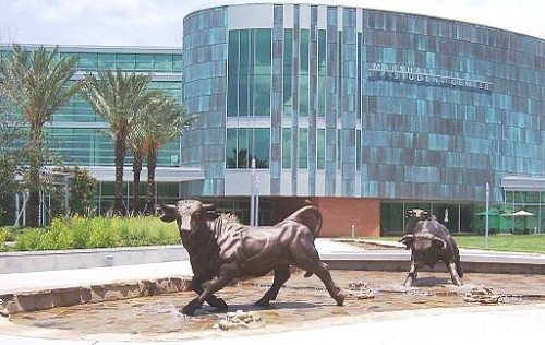 University of South Florida wiki