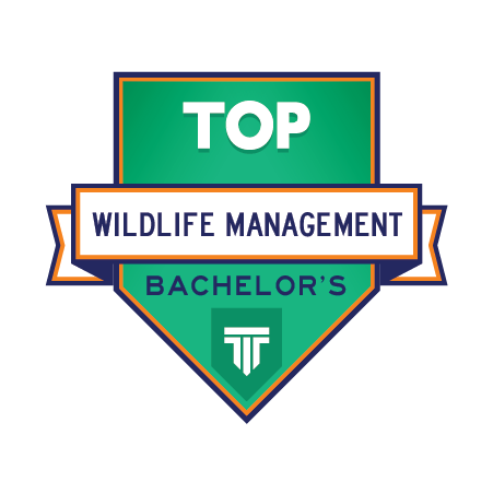 Top 5 Bachelor S Degrees In Wildlife Management Top Management Degrees